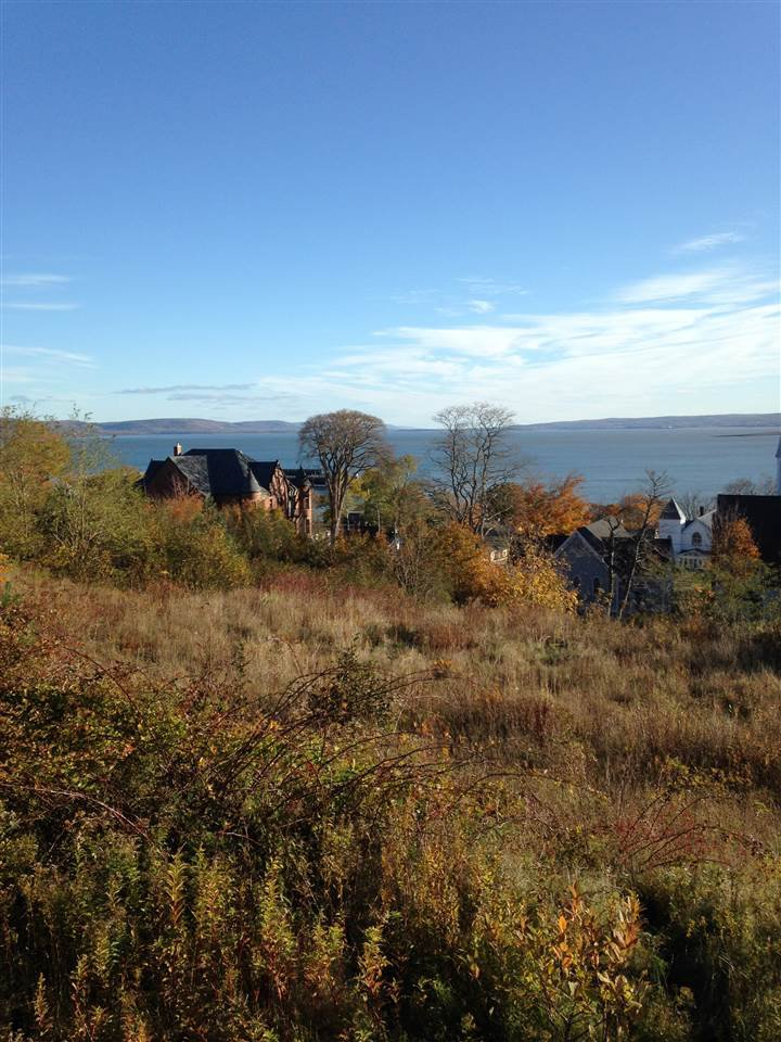 Main Photo: Lot 11 King Street in Digby: 401-Digby County Vacant Land for sale (Annapolis Valley)  : MLS®# 202021100