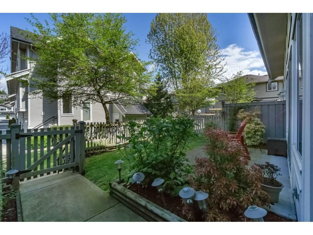 "Photo 17: Photos: 30 23343 KANAKA Way in Maple Ridge: Cottonwood MR Townhouse for sale in ""COTTONWOOD GROVE"" : MLS®# R2164744"