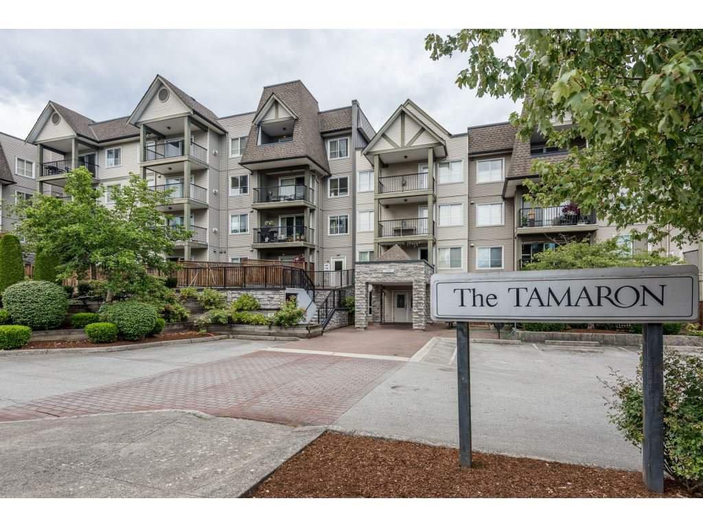 """Main Photo: 302 12083 92A Avenue in Surrey: Queen Mary Park Surrey Condo for sale in """"Tamaron"""" : MLS®# R2192268"""