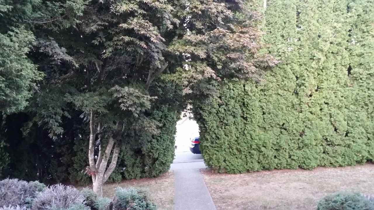 Photo 3: Photos: 4005 NOOTKA Street in Vancouver: Renfrew Heights House for sale (Vancouver East)  : MLS®# R2210023