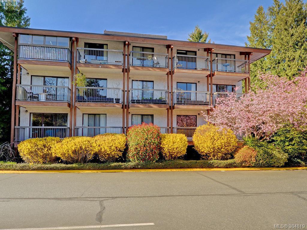 Main Photo: 415 1005 McKenzie Avenue in VICTORIA: SE Quadra Condo Apartment for sale (Saanich East)  : MLS®# 384819