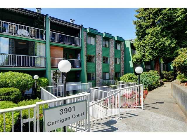 "Main Photo: 201 3901 CARRIGAN Court in Burnaby: Government Road Condo for sale in ""LOUGHEED ESTATES"" (Burnaby North)  : MLS®# V1030093"