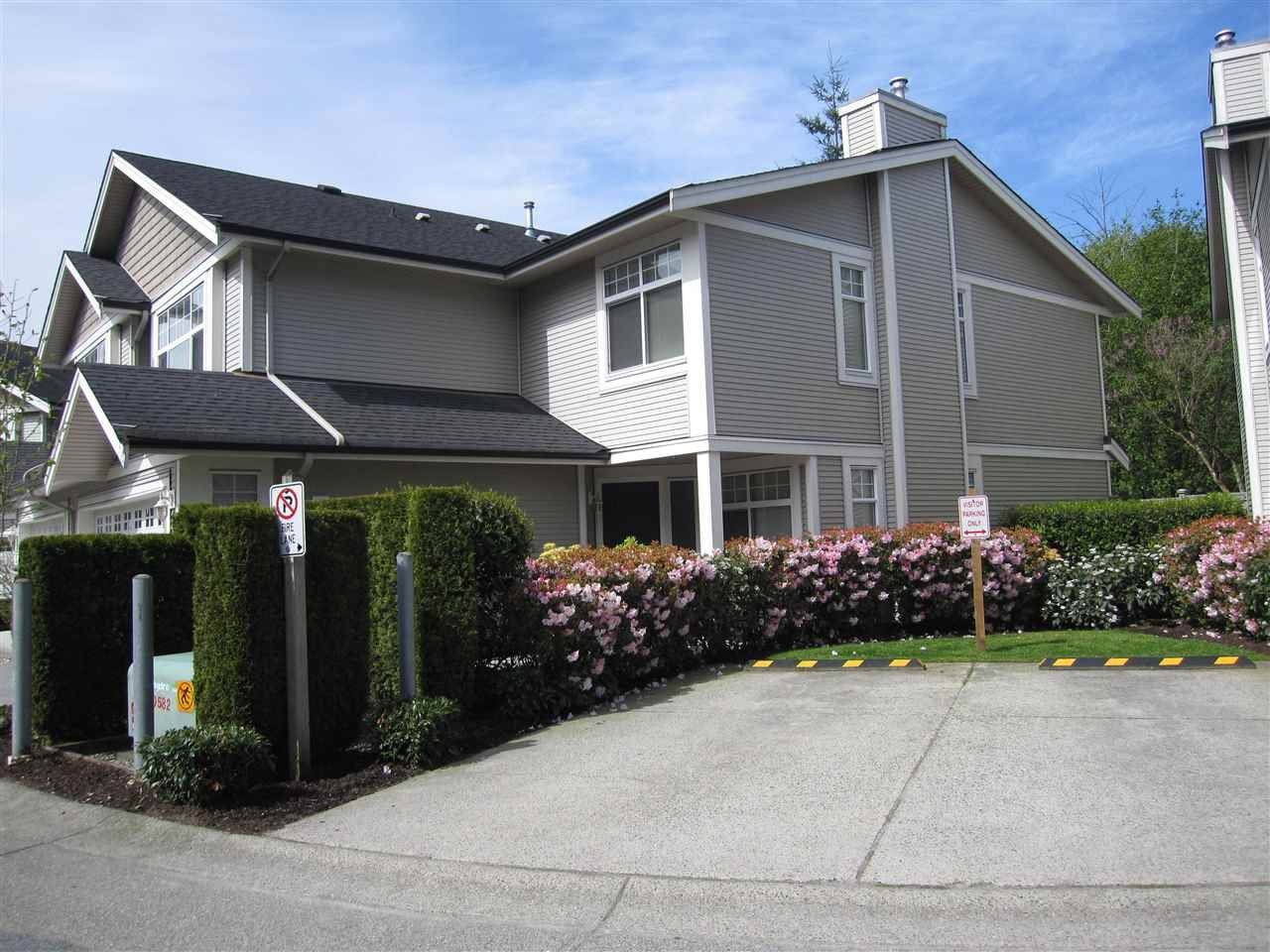 "Photo 2: Photos: 14 23343 KANAKA Way in Maple Ridge: Cottonwood MR Townhouse for sale in ""COTTONWOOD GROVE"" : MLS®# R2164779"