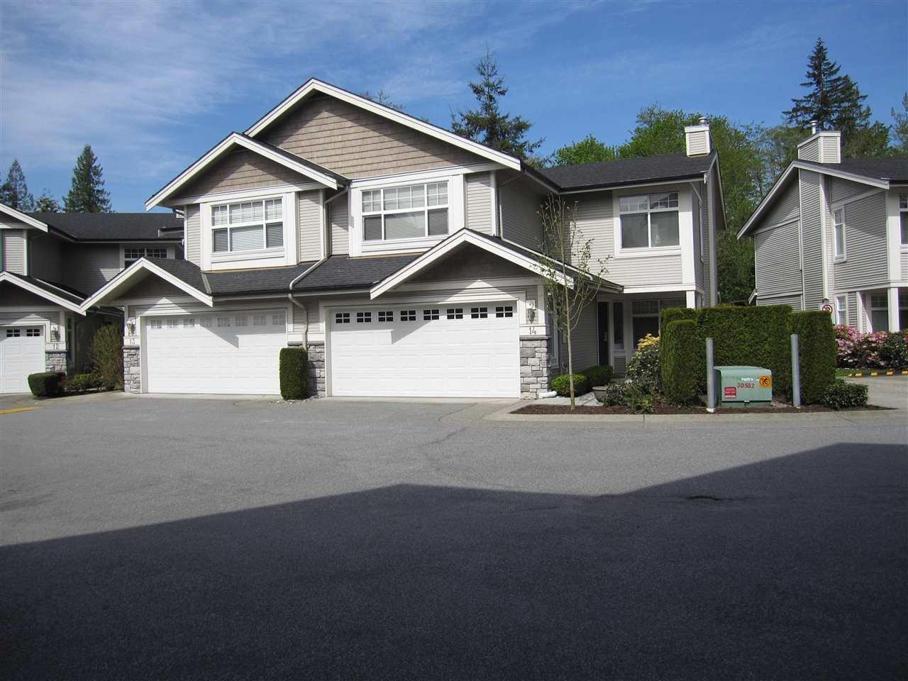 "Photo 1: Photos: 14 23343 KANAKA Way in Maple Ridge: Cottonwood MR Townhouse for sale in ""COTTONWOOD GROVE"" : MLS®# R2164779"
