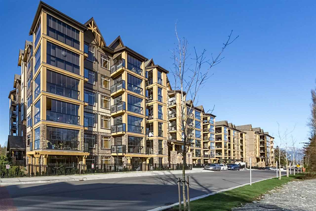 """Main Photo: 105 8157 207 Street in Langley: Willoughby Heights Condo for sale in """"YORKSON CREEK PARKSIDE 2"""" : MLS®# R2296991"""