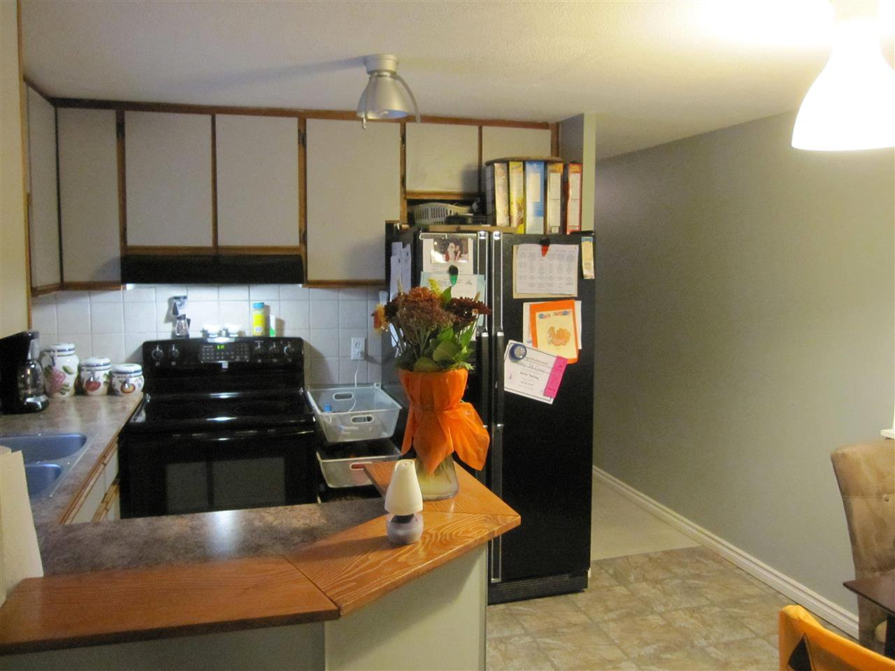 """Photo 6: Photos: 119 10221 WILSON Street in Mission: Stave Falls Manufactured Home for sale in """"Triple Creek Estates"""" : MLS®# R2010419"""