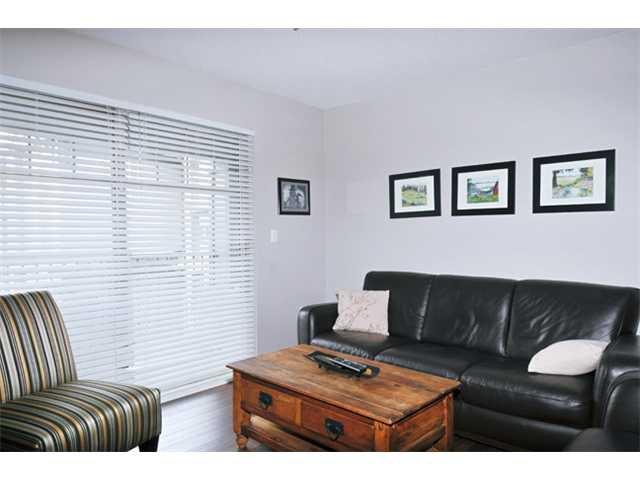 "Photo 10: Photos: 301 12020 207A Street in Maple Ridge: Northwest Maple Ridge Condo for sale in ""WESTBROOK"" : MLS®# V917594"