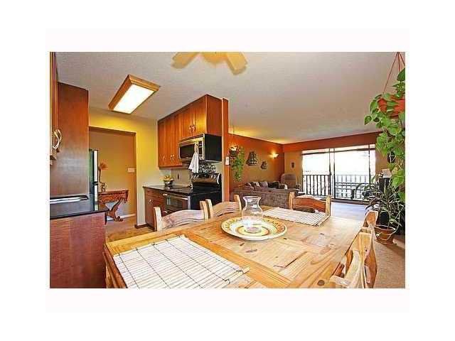 """Main Photo: 204 310 W 3RD Street in North Vancouver: Lower Lonsdale Condo for sale in """"DEVON MANOR"""" : MLS®# V907824"""