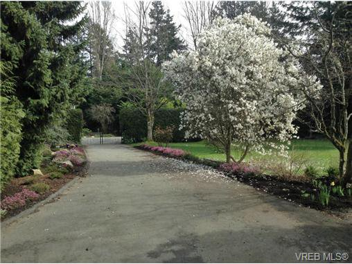 Photo 20: Photos: 8590 East Saanich Rd in NORTH SAANICH: NS Dean Park House for sale (North Saanich)  : MLS®# 720237