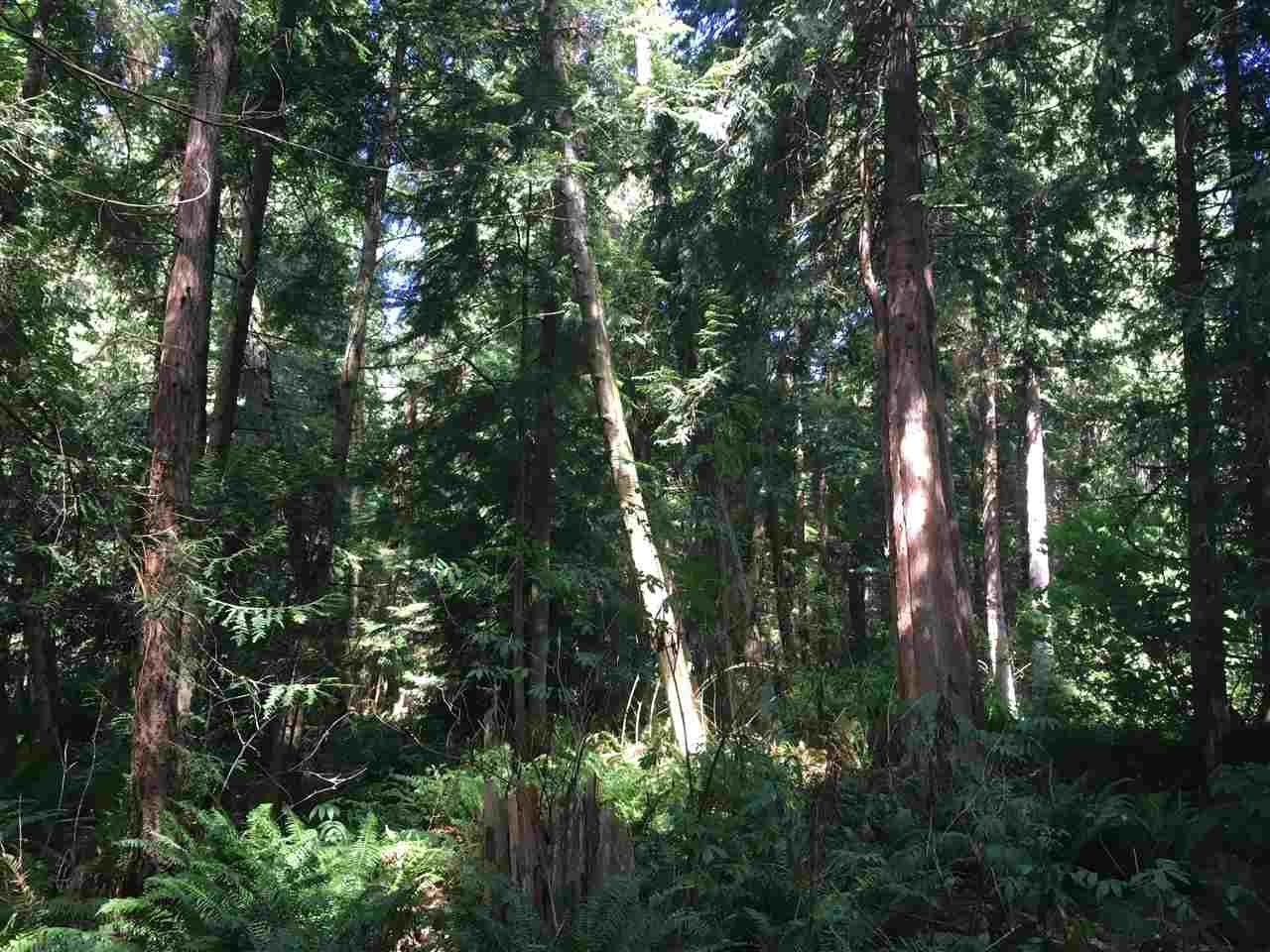 Main Photo: LOT 3 MARGARET Road: Roberts Creek Land for sale (Sunshine Coast)  : MLS®# R2239815