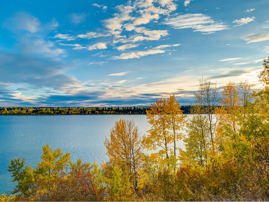 Photo 54: Photos: 22 Lincoln Green SW in : Lincoln Park House for sale (Calgary)  : MLS®# c4143515