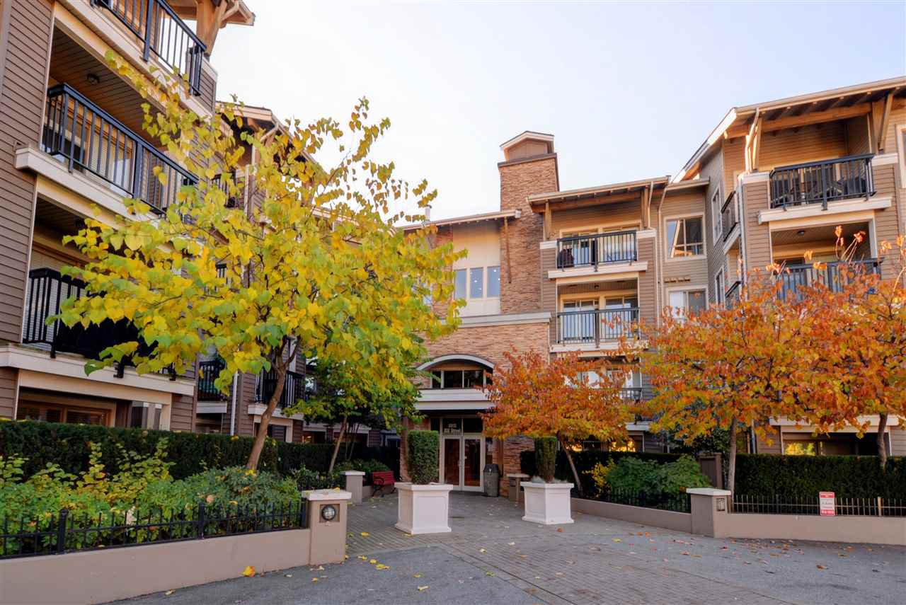 "Photo 20: Photos: 415 8915 202 Street in Langley: Walnut Grove Condo for sale in ""HAWTHORNE"" : MLS®# R2217261"