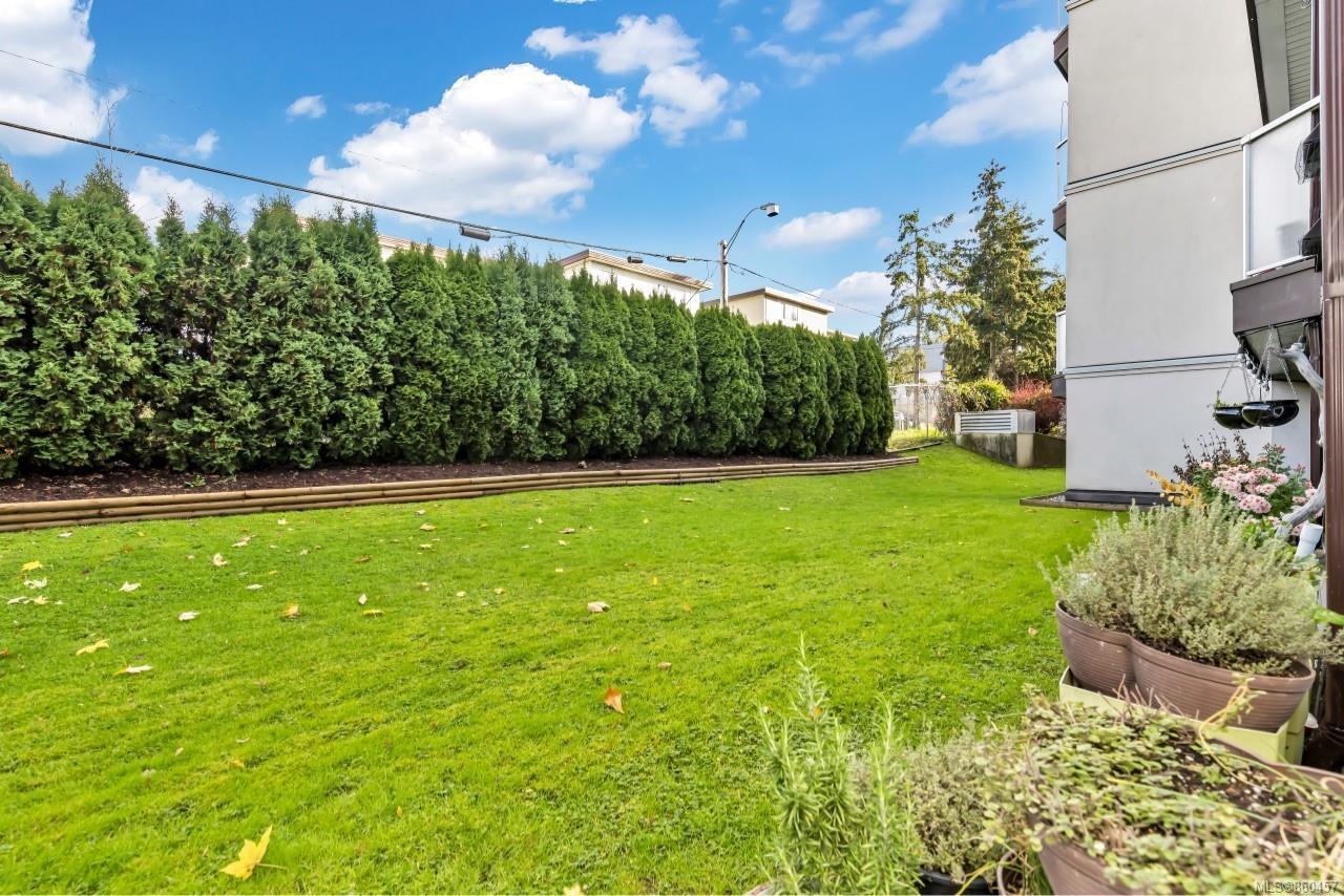 Photo 25: Photos: 105 2529 Wark St in : Vi Hillside Condo for sale (Victoria)  : MLS®# 860457