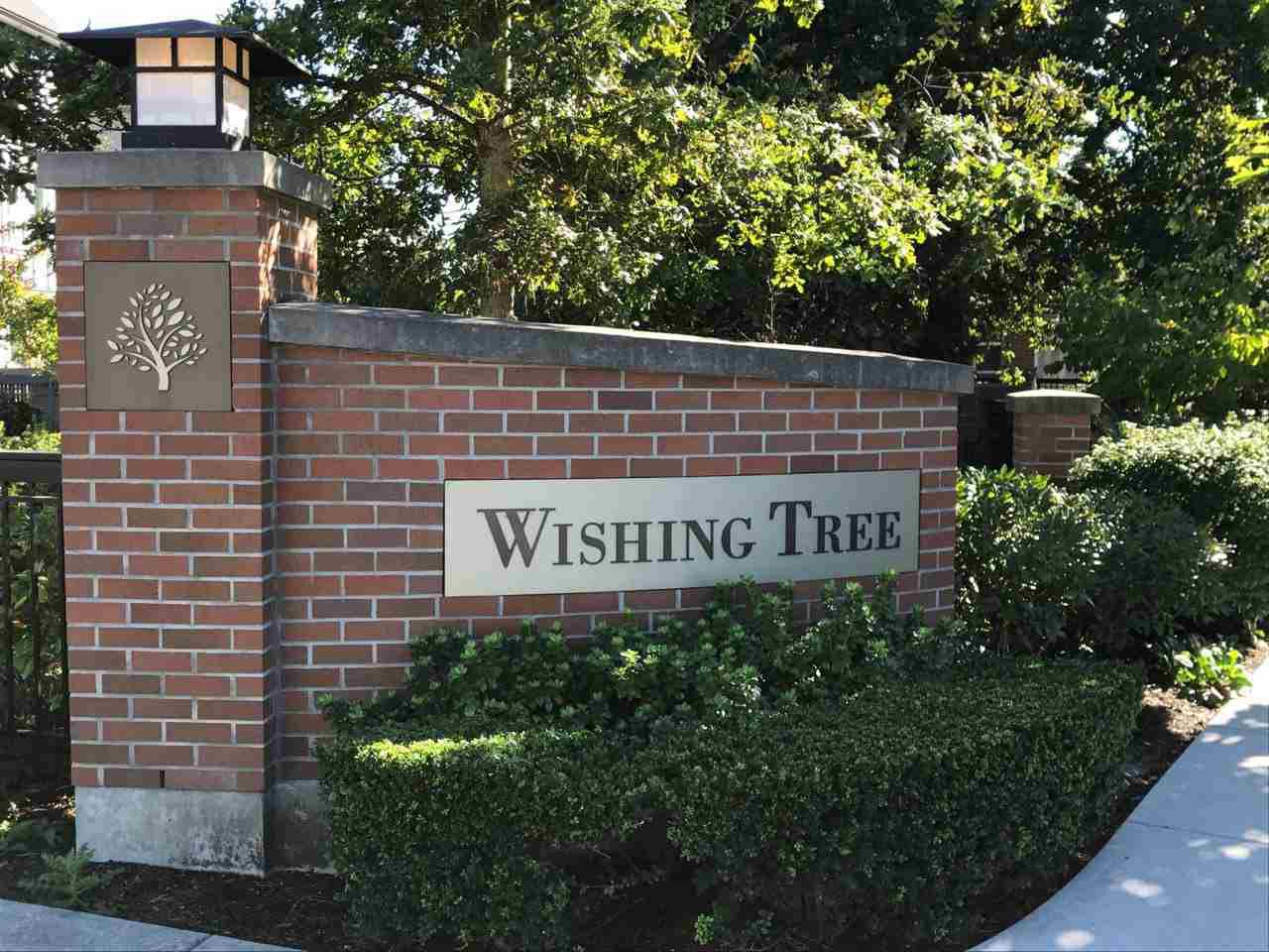 "Main Photo: 45 9566 TOMICKI Avenue in Richmond: West Cambie Townhouse for sale in ""WISHING TREE"" : MLS®# R2210549"