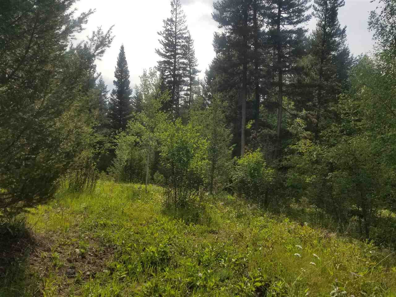 """Photo 2: Photos: 4863 STEWART Road in 108 Mile Ranch: 108 Ranch Land for sale in """"108 MILE RANCH"""" (100 Mile House (Zone 10))  : MLS®# R2391163"""