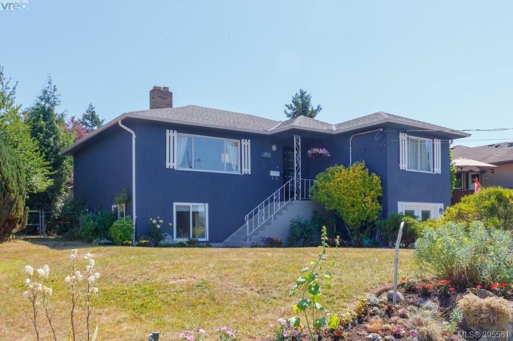 Main Photo: 3855 Seaton St in VICTORIA: SW Tillicum Single Family Detached for sale (Saanich West)  : MLS®# 793138