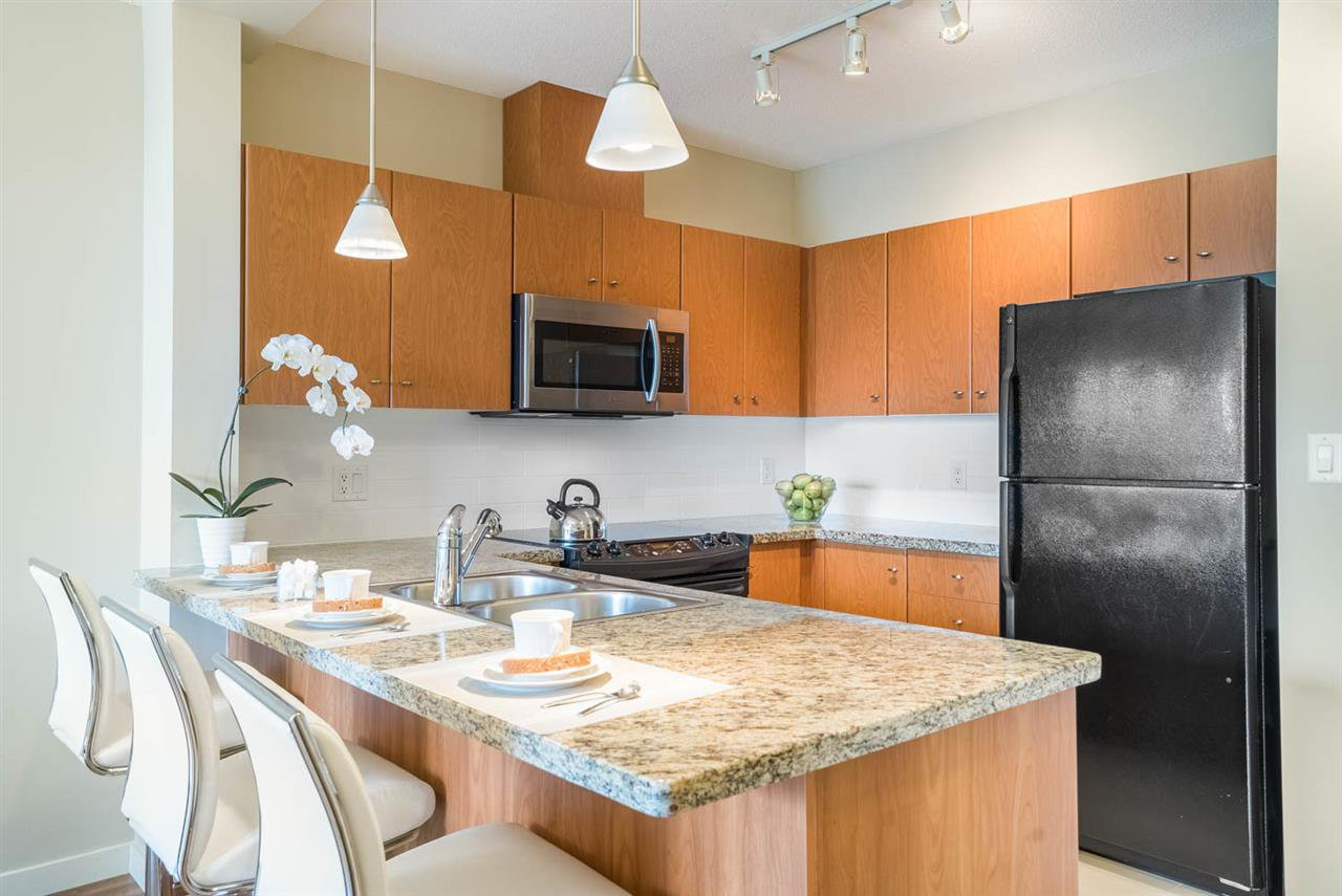 Main Photo: 209 511 ROCHESTER Avenue in Coquitlam: Coquitlam West Condo for sale : MLS®# R2083634
