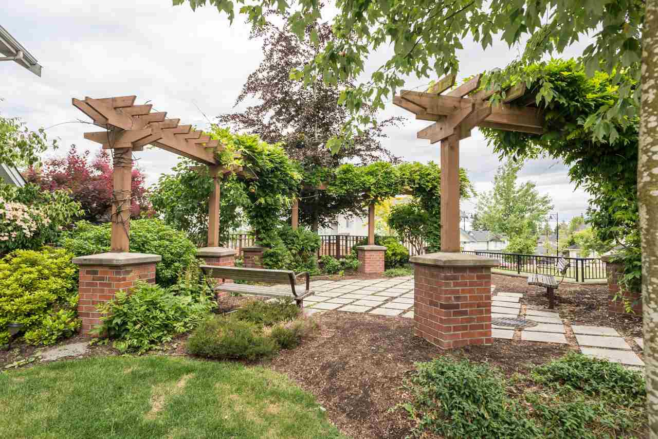"""Photo 15: Photos: 19 6036 164 Street in Surrey: Cloverdale BC Townhouse for sale in """"Arbour Village"""" (Cloverdale)  : MLS®# R2278844"""