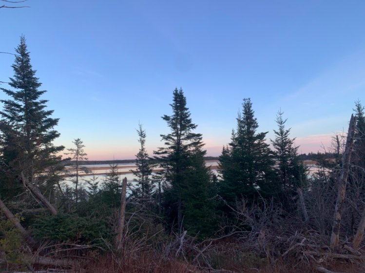 Main Photo: 6854 207 Highway in West Chezzetcook: 31-Lawrencetown, Lake Echo, Porters Lake Vacant Land for sale (Halifax-Dartmouth)  : MLS®# 202100383