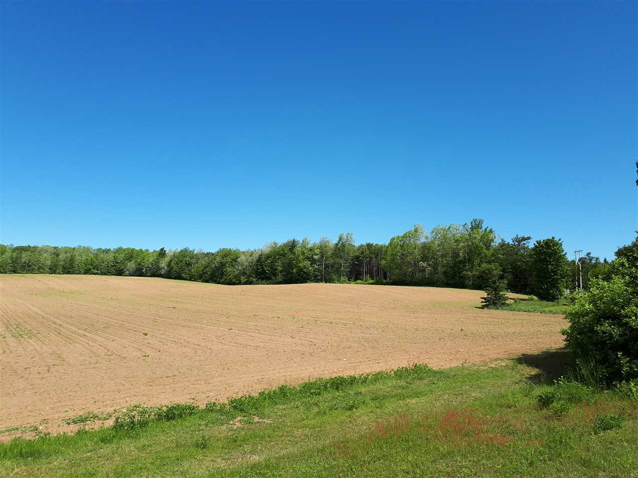 Photo 2: Photos: Chase Road in South Berwick: 404-Kings County Vacant Land for sale (Annapolis Valley)  : MLS®# 201814164