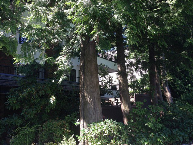 Main Photo: 309 1319 MARTIN Street in White Rock: Home for sale : MLS®# F1416926