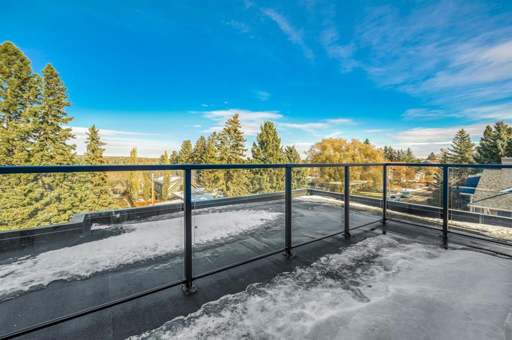 Photo 31: Photos: 827 25 Avenue NW in Calgary: Mount Pleasant Detached for sale : MLS®# A1045527