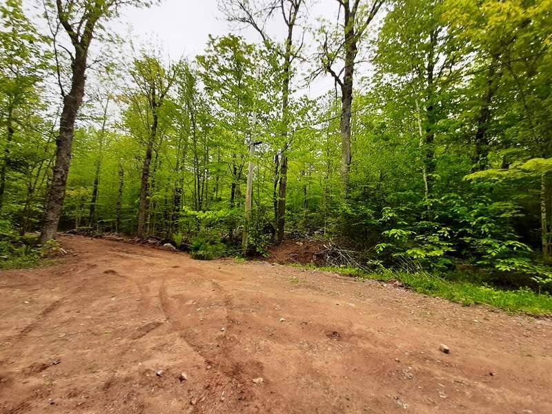 Main Photo: Lot N4 Nature Heaven Road in Lake Paul: 404-Kings County Vacant Land for sale (Annapolis Valley)  : MLS®# 202009526