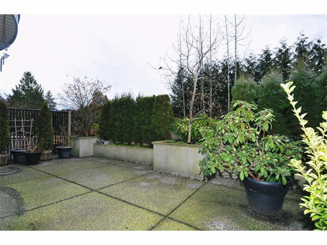 """Photo 13: Photos: 104 12090 227TH Street in Maple Ridge: East Central Condo for sale in """"FALCON PLACE"""" : MLS®# V1099703"""