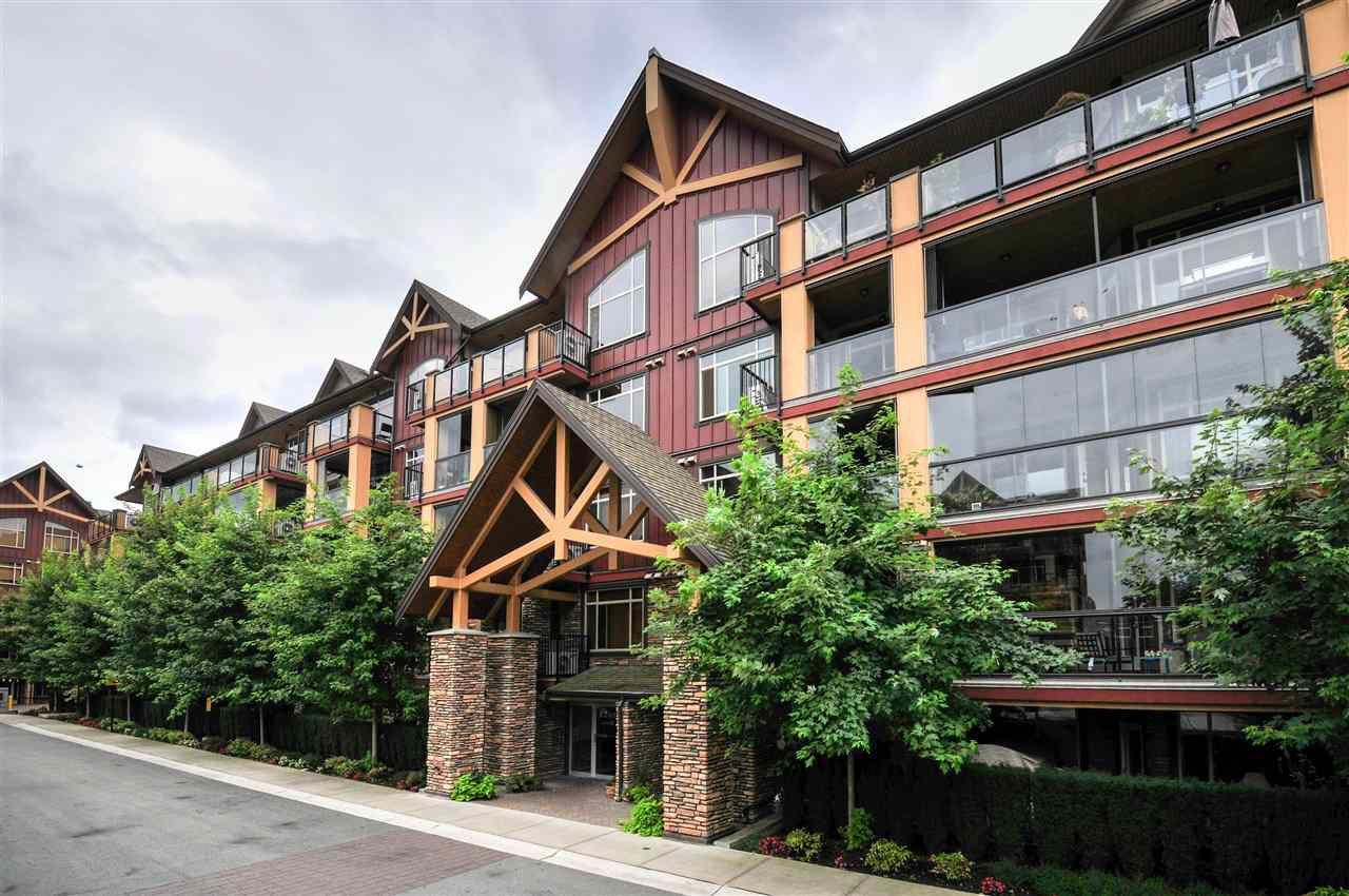 """Main Photo: 229 8288 207A Street in Langley: Willoughby Heights Condo for sale in """"Yorkson Creek"""" : MLS®# R2103080"""