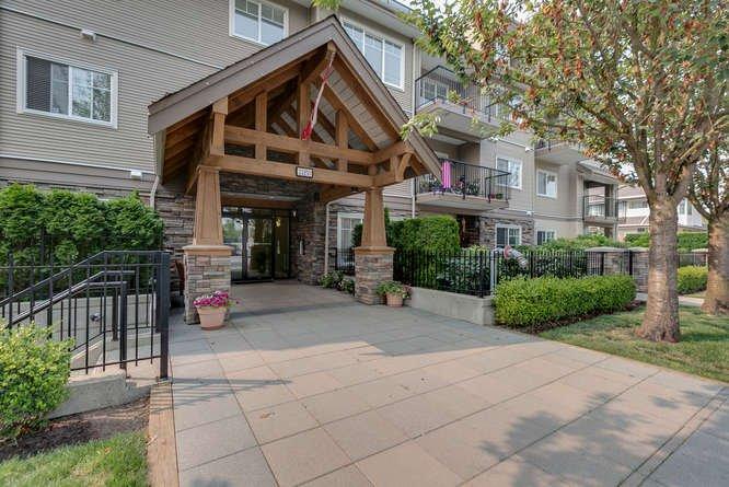 "Main Photo: 112 22150 DEWDNEY TRUNK Road in Maple Ridge: West Central Condo for sale in ""Falcon Manor"" : MLS®# R2196263"