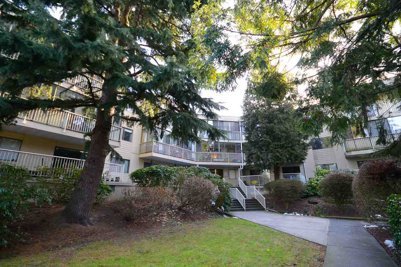 Main Photo: 311 8040 BLUNDELL Road in Richmond: Garden City Condo for sale : MLS®# R2131489