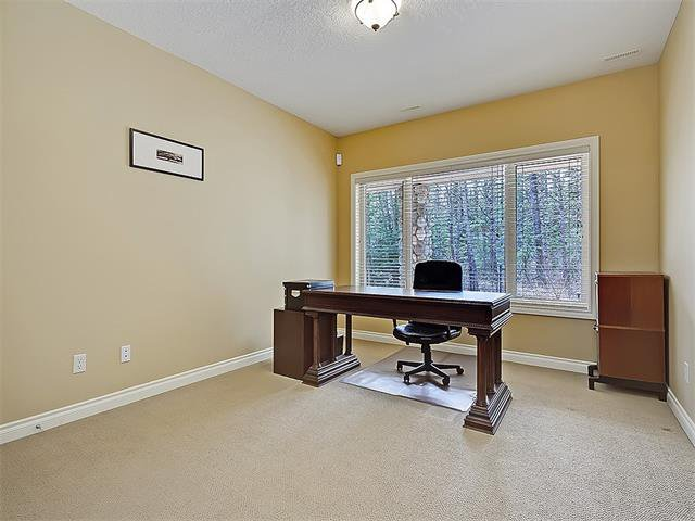 Photo 43: Photos: 18 DISCOVERY RIDGE Heath SW in Calgary: Discovery Ridge House for sale : MLS®# C4110959