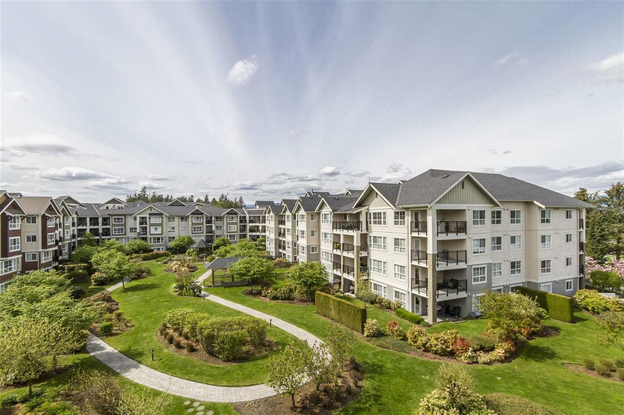 "Main Photo: 428 19677 MEADOW GARDENS Way in Pitt Meadows: North Meadows PI Condo for sale in ""THE FAIRWAYS"" : MLS®# R2161667"