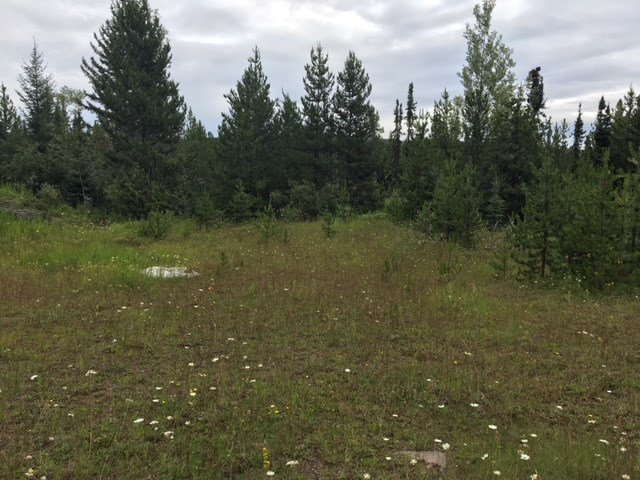 """Photo 7: Photos: 9301 HARRINGTON PIT Road in Quesnel: Quesnel - Rural West Land for sale in """"NAZKO"""" (Quesnel (Zone 28))  : MLS®# R2392448"""