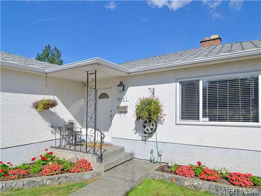 Main Photo: 4147 Hawkes Ave in VICTORIA: SW Glanford Single Family Detached for sale (Saanich West)  : MLS®# 653887