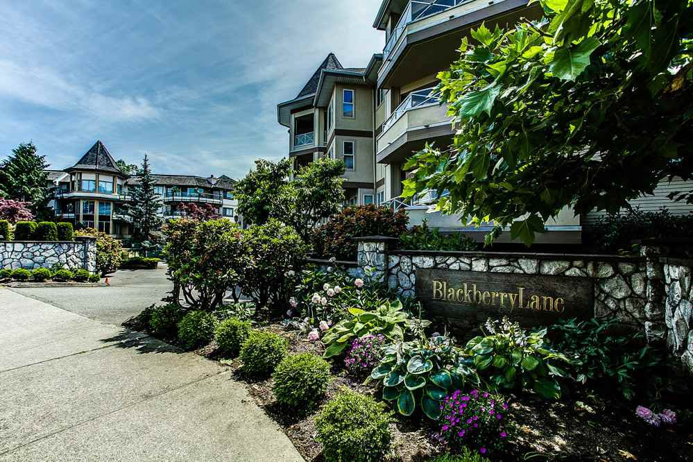 "Main Photo: 113 20120 56 Avenue in Langley: Langley City Condo for sale in ""BLACKBERRY LANE"" : MLS®# R2076345"