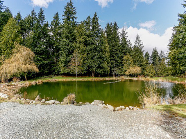 """Photo 5: Photos: 26643 58TH Avenue in Langley: County Line Glen Valley House for sale in """"County Line Glen Valley"""" : MLS®# F1406610"""