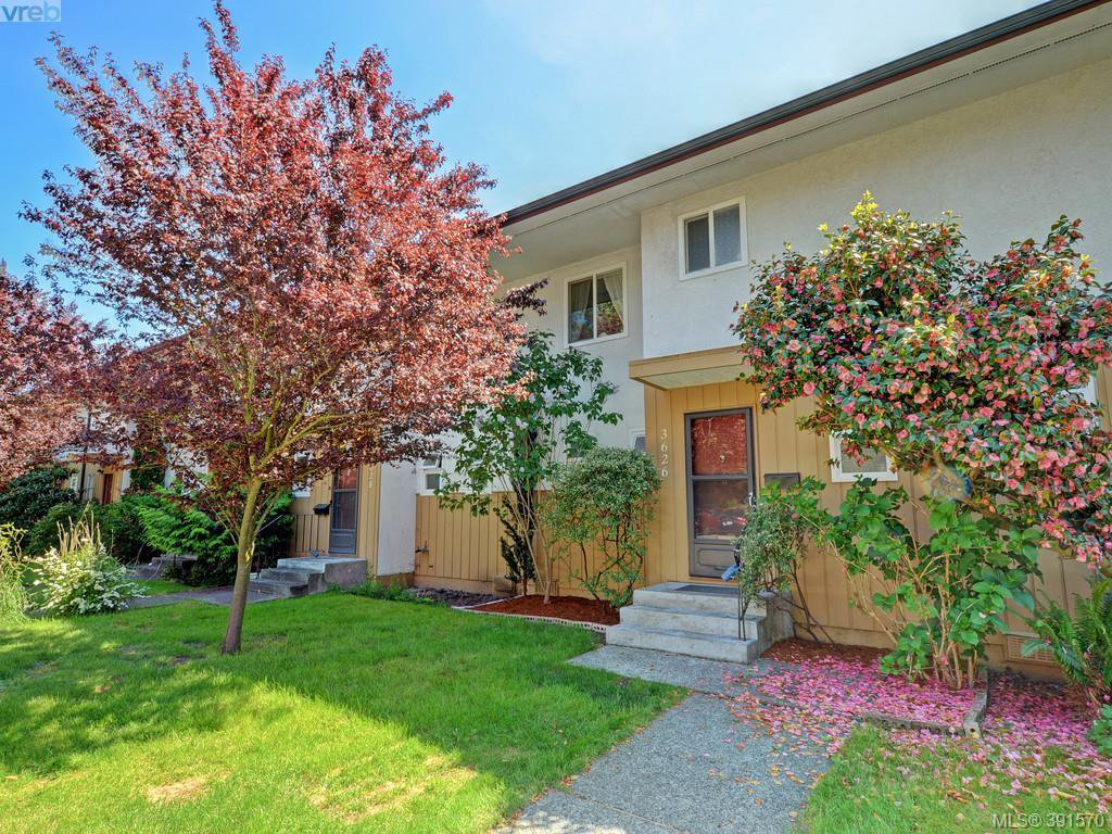 Main Photo: 3626 Tillicum Road in VICTORIA: SW Tillicum Townhouse for sale (Saanich West)  : MLS®# 391570