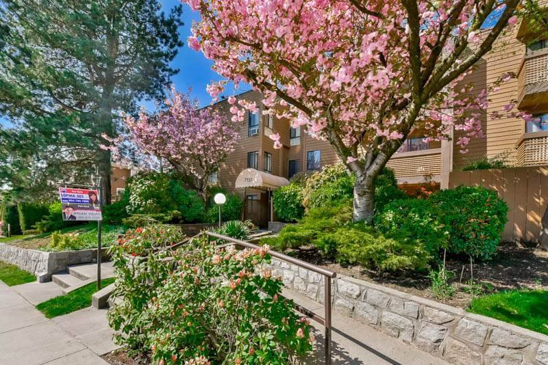 """Main Photo: 413 7151 EDMONDS Street in Burnaby: Highgate Condo for sale in """"BAKERVIEW"""" (Burnaby South)  : MLS®# R2326570"""