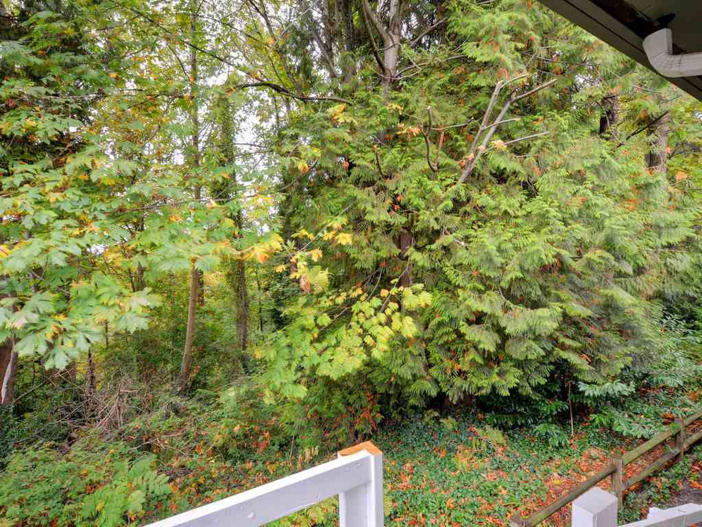 Photo 19: Photos: 537 W 15TH Street in North Vancouver: Central Lonsdale House for sale : MLS®# R2120937