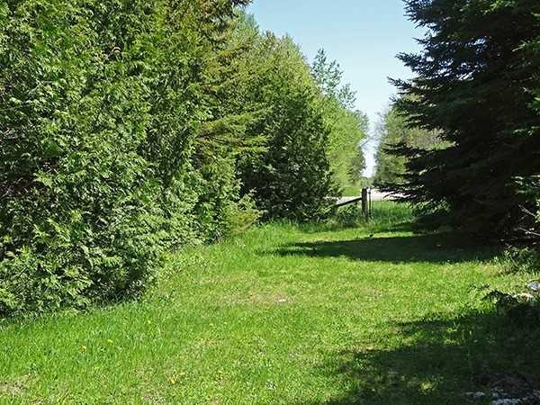 Photo 15: Photos: B33935 Thorah Sideroad in Brock: Beaverton Freehold for sale : MLS®# N3812114