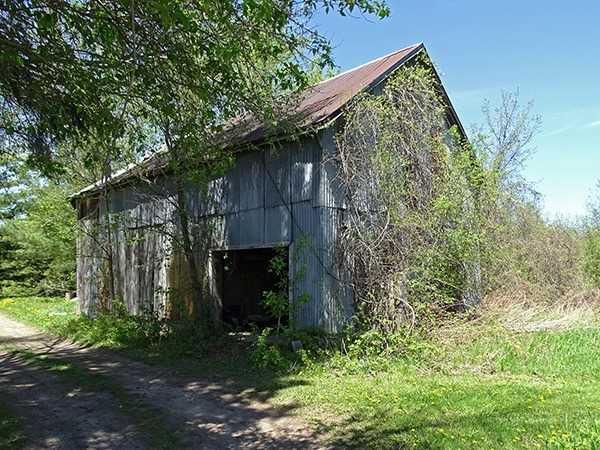 Photo 10: Photos: B33935 Thorah Sideroad in Brock: Beaverton Freehold for sale : MLS®# N3812114