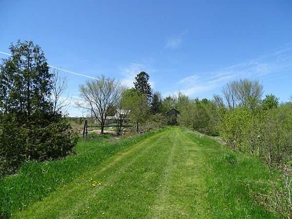 Photo 12: Photos: B33935 Thorah Sideroad in Brock: Beaverton Freehold for sale : MLS®# N3812114