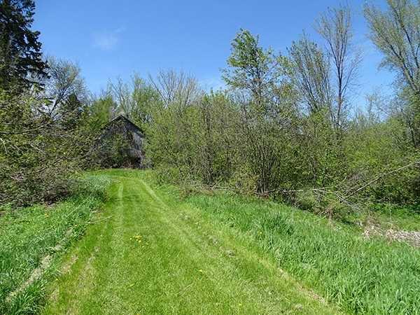 Photo 13: Photos: B33935 Thorah Sideroad in Brock: Beaverton Freehold for sale : MLS®# N3812114
