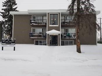 Main Photo: 10048 154 Street in Edmonton: Zone 22 Multi-Family Commercial for sale : MLS®# E4139898