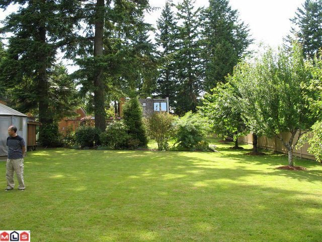 Photo 7: Photos: 2440 139TH Street in Surrey: Elgin Chantrell House for sale (South Surrey White Rock)  : MLS®# F1104838