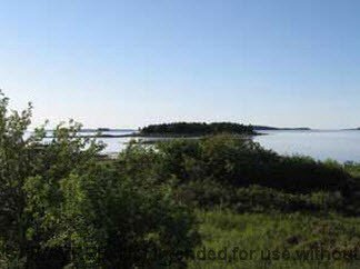 Main Photo: Lot 1 RUM RUNNERS Lane in Martins Point: 405-Lunenburg County Vacant Land for sale (South Shore)  : MLS®# 201709962