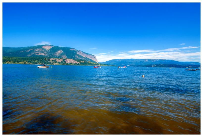 Photo 16: Photos: 2 334 Tappen Beach Road in Tappen: Fraser Bay House for sale : MLS®# 10138843