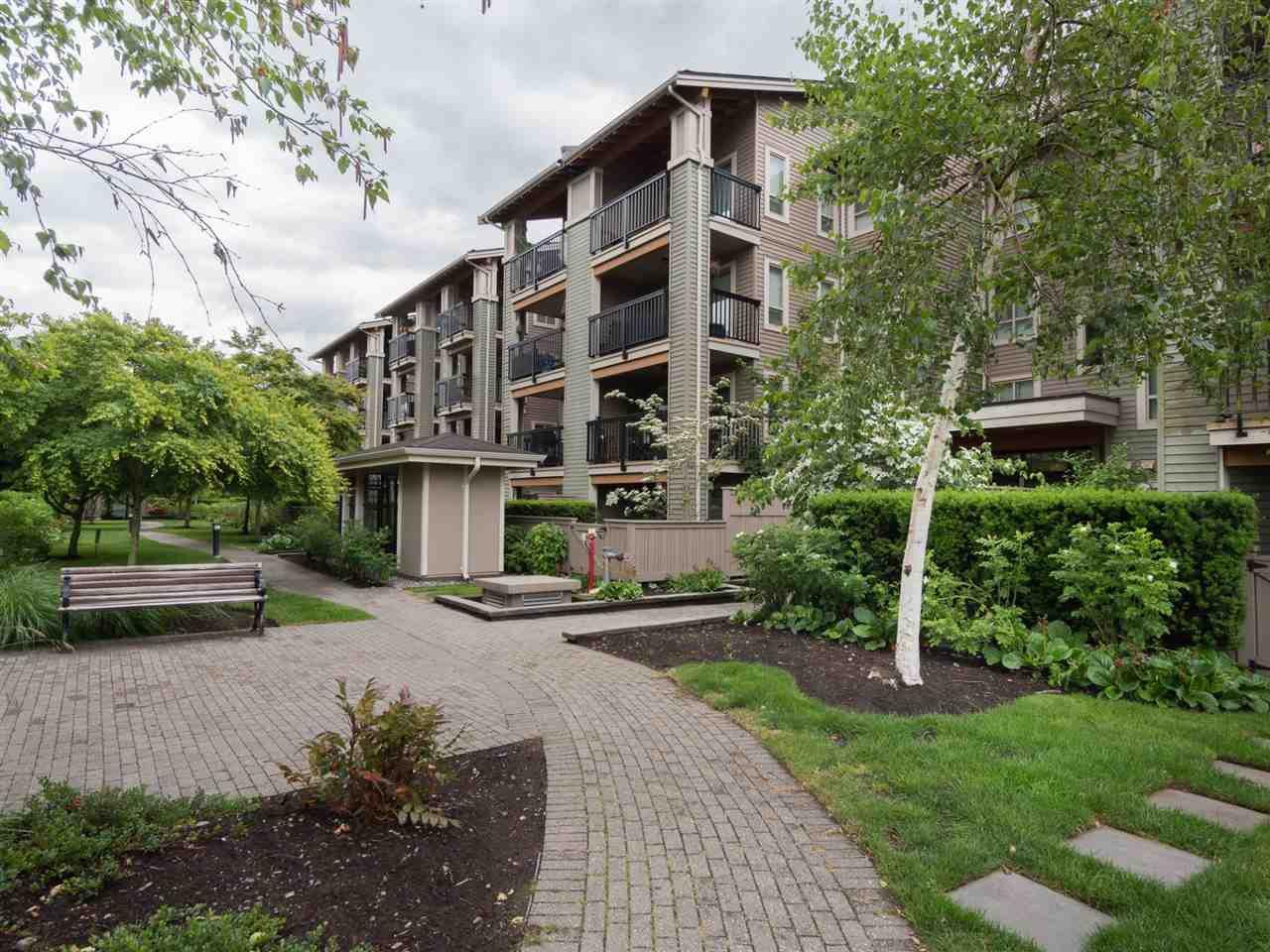 "Photo 16: Photos: 116 21009 56 Avenue in Langley: Salmon River Condo for sale in ""CORNERSTONE"" : MLS®# R2296673"
