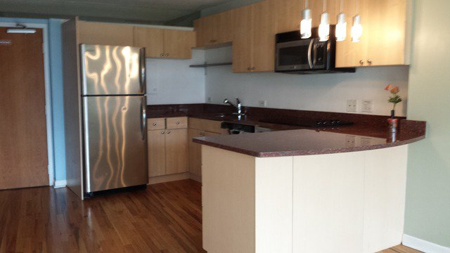 Photo 9: Photos: 800 Wells Street Unit 920 in CHICAGO: Loop Rentals for rent ()  : MLS®# MRD08759711